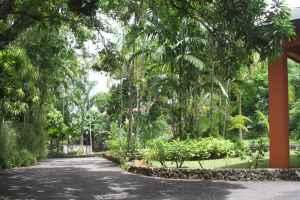 Villa Ronai3