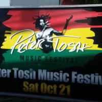 Peter Tosh Music Festival mini board